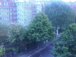 View Fulham Chelsea myhotel Window