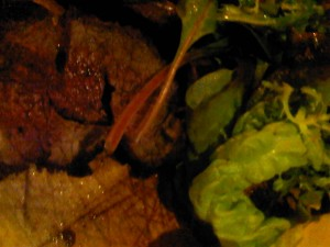 Sophies Steakhouse's Chateaubriand