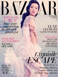 Sun Fei Fei Harpers Bazaar