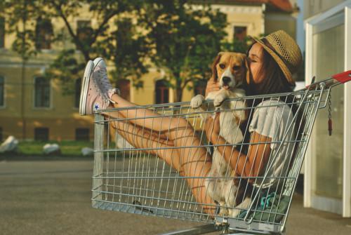 in shopping cart