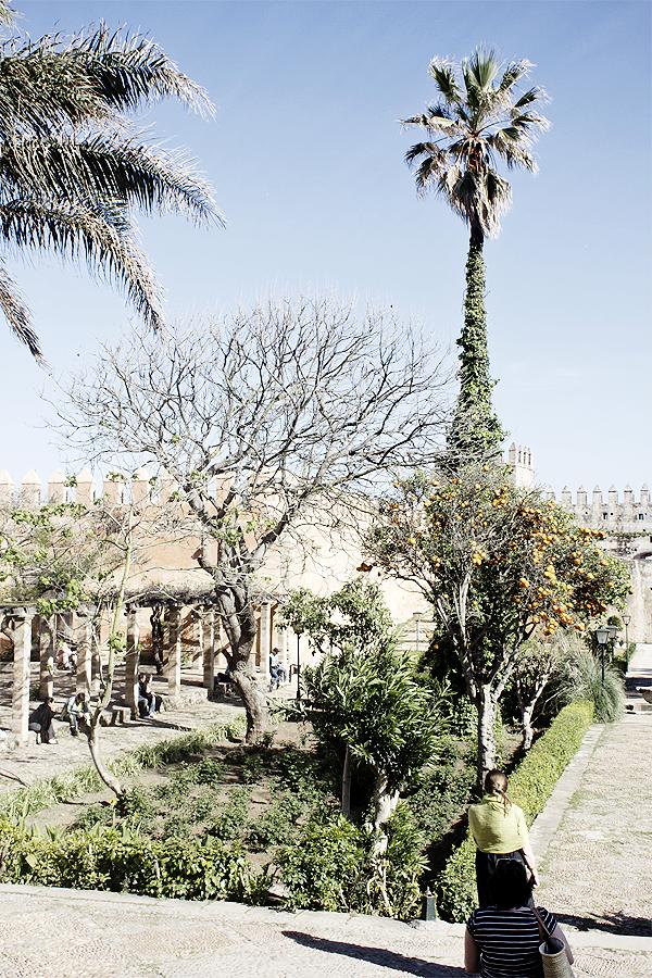 kasbah morocco