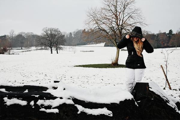 ski blogger