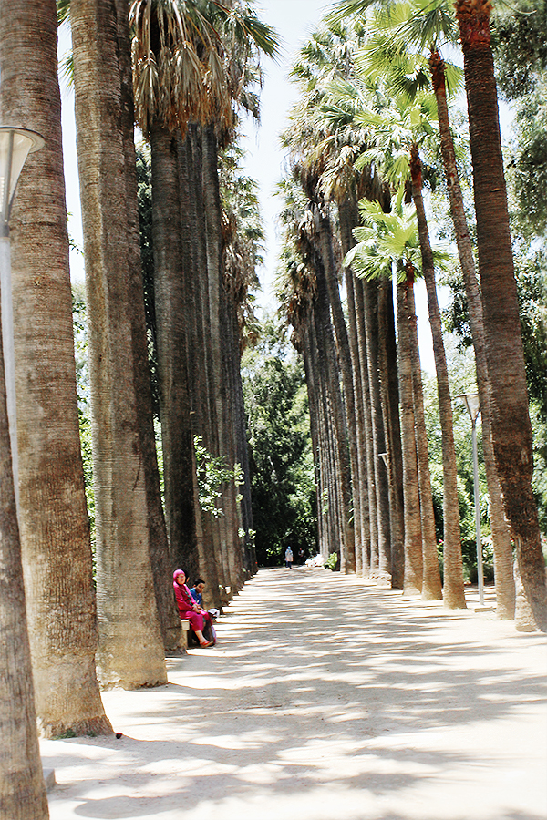 fes morocco 23