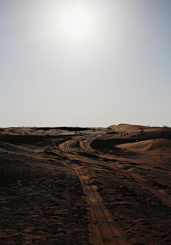 desert safari ras al kaimah 4