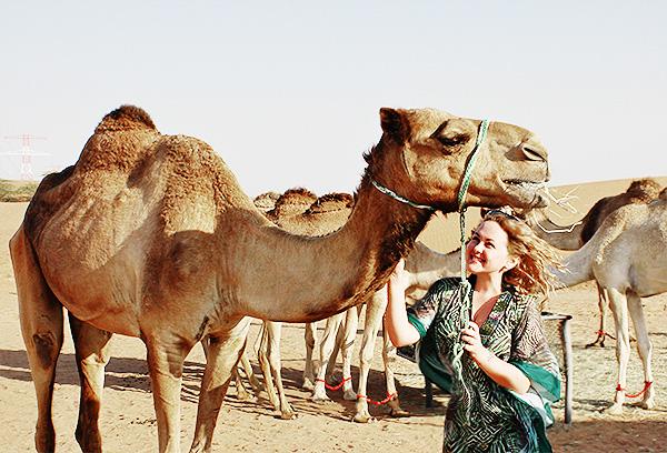 desert safari ras al kaimah