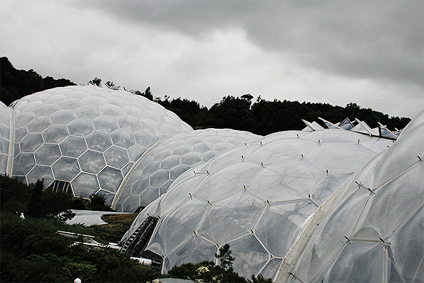 the cornwall eden project 14