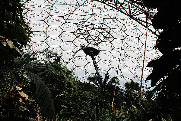 the cornwall eden project 20